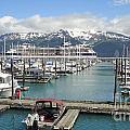 Alaskan Marina by C Stewart