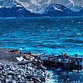 Alaskan Ocean by Luther Barnett