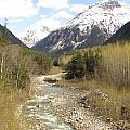 Alaskan Stream by Larry Marano