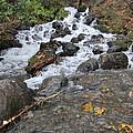 Alaskan Waterfall by Richard Booth