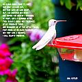 Albino Angel by Gail Butler