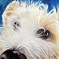 Albus by Carolyn Coffey Wallace