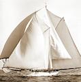 Alcaea, Alcaea Schooner, Yachts by Litz Collection