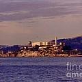 Alcatraz by John Malone