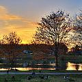 Alcion Lake  by Robert Culver