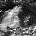 Alder Falls #2 by Paul Rebmann