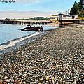 Alert Bay Beach Scape by Eric Hamilton