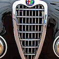 Alfa Romeo Milano Grille by Jill Reger