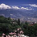 Alhambra View by Richard Thomas