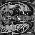 Alien Brain by Georgeta Blanaru