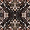 Alien - Tree Bark Art Abstraction by Ruth Valasini