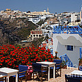 All About The Greek Lifestyle by Bob Christopher