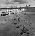 All The Roads Lead To The Pleasure Pier by Silvio Ligutti