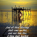 All These Blessings by Sheri McLeroy