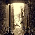 Alleyway by Danielle Mattson