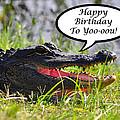 Alligator Birthday Card by Al Powell Photography USA