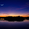 Alligator Twilight by Mark Andrew Thomas