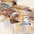 Alligators by John Singer Sargent