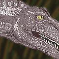Allosaurus by Jeffrey Oleniacz
