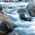 Alluvial Fan Falls On Roaring River Inrocky Mountain National Park by Fred Stearns