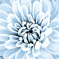 Almost Perfect-blue by Lori Frostad