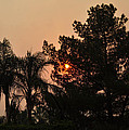 Almosts Gone Now Sunset In Smoky Sky by Jay Milo