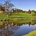 Alnwick Castle Panorama by David Pringle