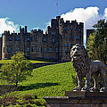 Alnwick Lion by David Pringle
