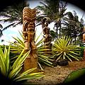 Aloha From Hawaii by Esther Wilhelm Pridgen