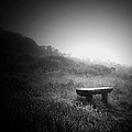 Alone by Ann Fogarty
