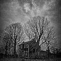 Alone In A Field by Jon Dickson