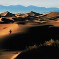 Alone In Nature by Babak Mehrafshar (bob)