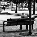 Alone In The Park Mono by John Rizzuto