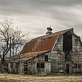 Along A Delaware Backroad by Erika Fawcett