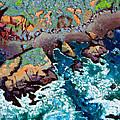 Along California Coastline by John Lautermilch