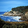 Along The California Coast by Mary Rogers