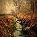 Along The Canal by Roberto Pagani