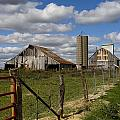 Along The Fence Line by Eric Mace