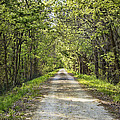 Along The Katy Trail by Cricket Hackmann