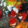 Along The Orange String Road by Chris Sotiriadis