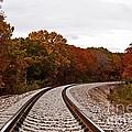 Along The Rails by Julie Clements