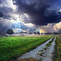 Along The Way by Phil Koch