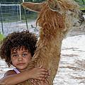 Alpaca Love by Judy Wanamaker