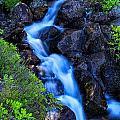 Alpine Brook by Stuart Gordon