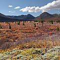 Alpine Landscape In Fall by Stephan Pietzko