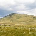 Alpine Mountain  by Jim Pruitt