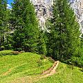 alpine path in Contrin Valley by Antonio Scarpi