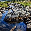 Alpine Stream Beartooth Mounain Range by Edward Fielding
