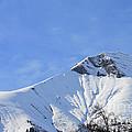 Alps Vista  by Felicia Tica