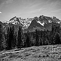 Alpspitze Till Zugspitze II by Hannes Cmarits